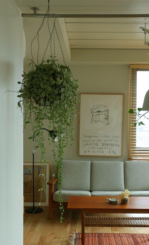 スタッフの自宅でのグリーンの取り入れ方を参考に、グリーン導入のヒントを解説していこうと思います。