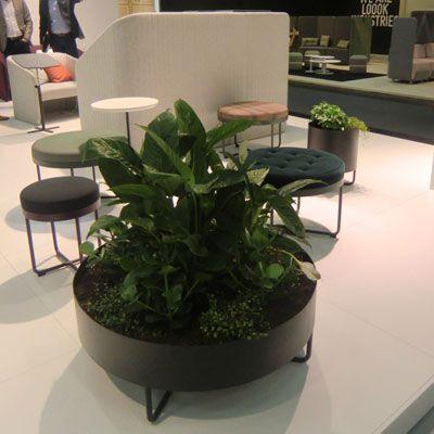 Кашпо SHIMA GARDEN впервые представлены на выставке ORGATEC 2016 в Кельне. SHIMA GARDEN - кашпо различных размеров под цветы или зеленые растения. Дополняет серию мебельного гибрида для отдыха и работы SHIMA. SHIMA GARDEN открывает еще больше возможностей для творческой работы, а также позволит освежить Ваш интерьер.Цветовая гамма: белый, черный, multicolor (RAL).