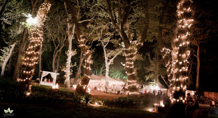 ..::Beloftebos Wedding Venue::..- www.beloftebos.co.za