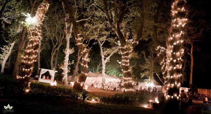 ..::Beloftebos Wedding Venue::..- www.beloftebos.co.za for lorrain and robby!