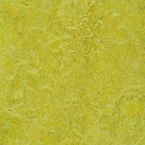 Bathroom Floor: Forbo Marmoleum Chartreuse