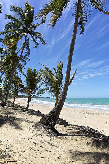 Maceió, Alagoas, Brasil...