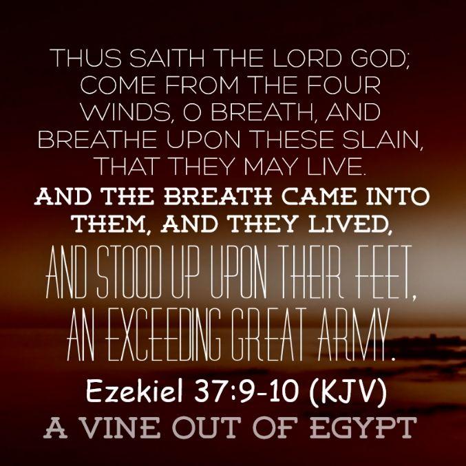 Ezekiel 37:9-10 (KJV)