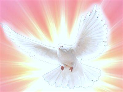 MI RINCON ESPIRITUAL: Los dones y los frutos del Espíritu Santo