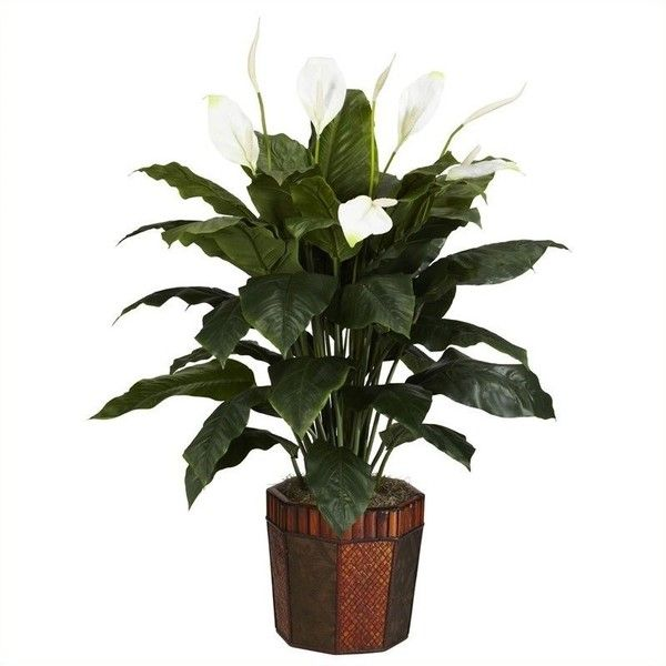 Alter Decor Idea Would Also Look Nice At Floor Altar With: 25+ Best Ideas About Tropical Artificial Flowers On