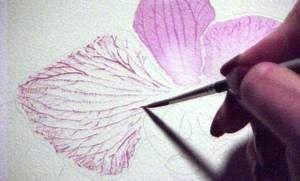 Susie Short Watercolor-Tips Veins -Direct Method