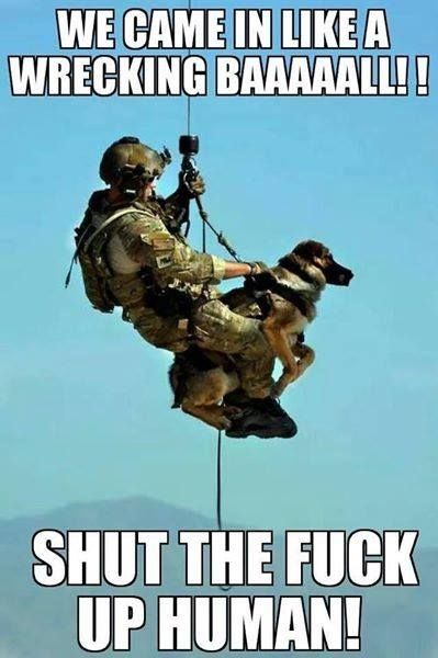 d6a1fa08f647669bdfc7bd2f43ec7887 military quotes funny military 49 best shut up carl! images on pinterest military memes, funny