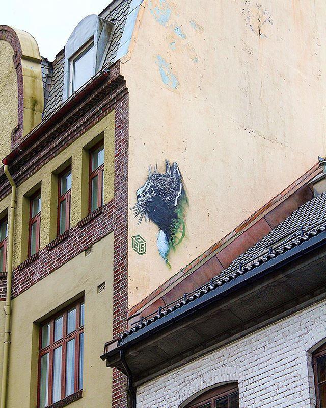We were thrilled to see C215 @christianguemy latest piece here in Bergen! ------------------------- #bergen #norway #visitbergen #visitnorway #streetart #stencil #stencilart #streetartbergen @vaultstudiosbergen #streetarteverywhere #art #arts #artsy #artist #artwork #instago #instaart #instapic #instacool #instagood #instadaily #instamood #instagram #instaphoto #instamoment #igers #igdaily #c215 #cat #gatekunst #gatekunstbergen