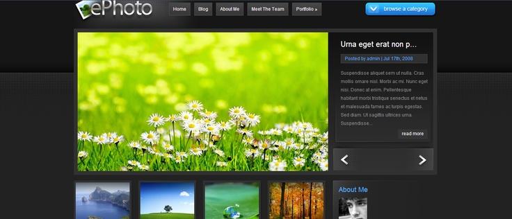 Elegant theme - ePhoto