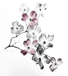 Dogwood Branch Drawing 1000+ ideas about dogwood tattoo on pinterest dogwood ...