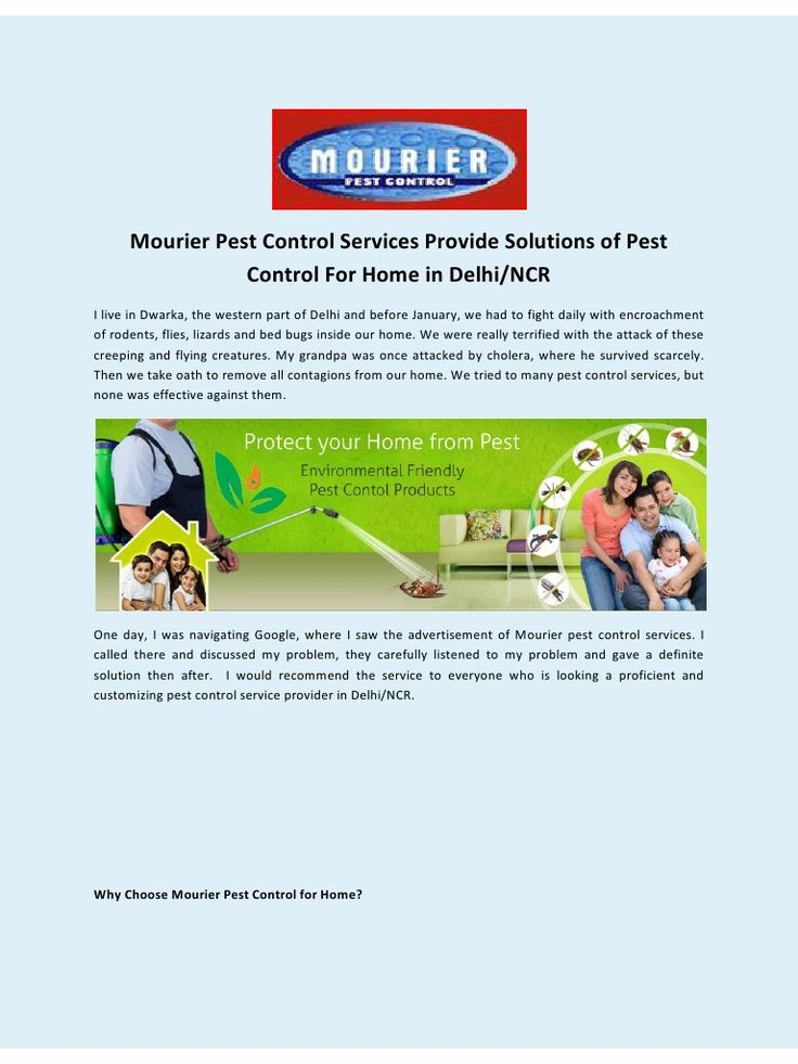 Mourier Pest Control Services Provide Solutions of Pest Control For Home in Delhi/NCR.
