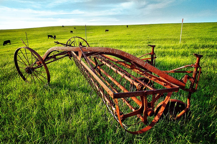 Old farm equipment  This is a side rake for raking hay in the fields.