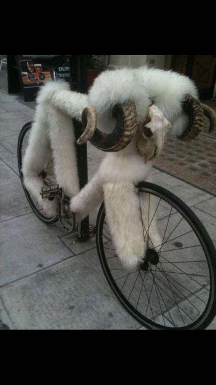 Bicixai