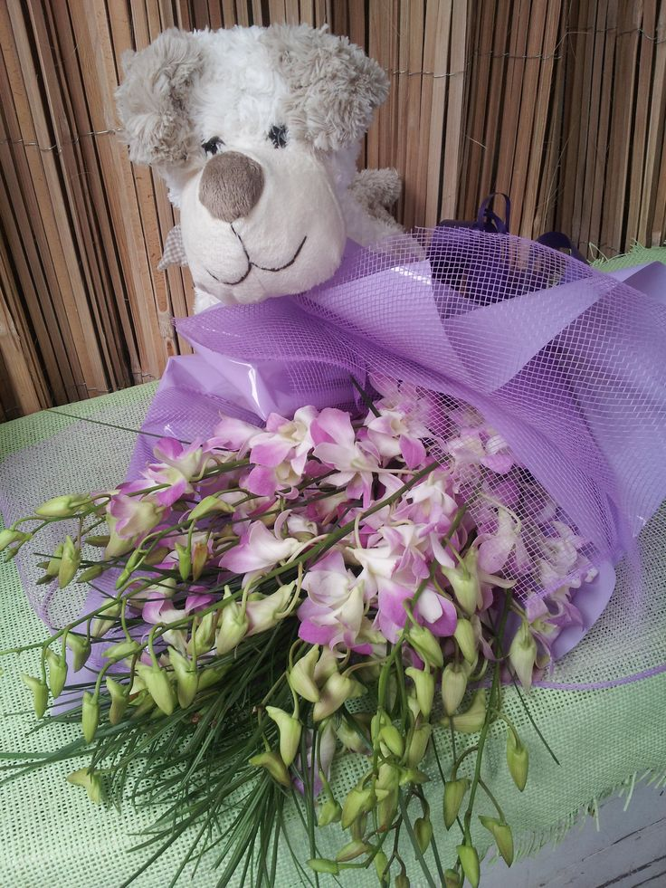 captivating orchids with a cuddly toy for any occasion. Order online. Adelaide delivery  for all occasions