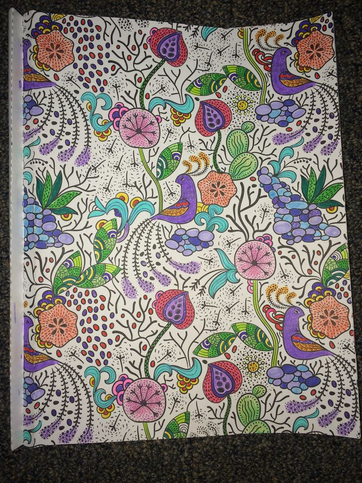 Adult Coloring From Color Art For Everyone Album On