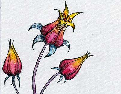 """Check out new work on my @Behance portfolio: """"Exotic Flower"""" http://be.net/gallery/31153551/Exotic-Flower"""