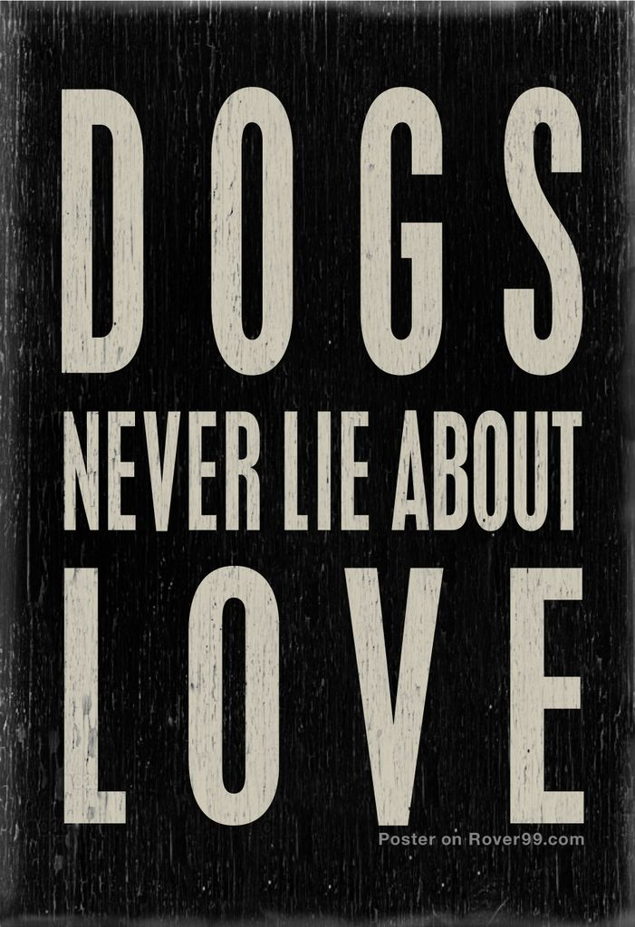 aplacetolovedogs: Dogs never lie about love This dog quotes poster is available here at Rover99.com