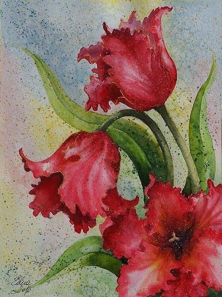 Edyta Nadolska Watercolor Art - 'Parrot Tulips'
