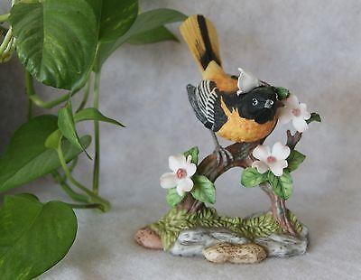 Maruri Songbird Serenade Northern (Baltimore) Oriole with Dogwood