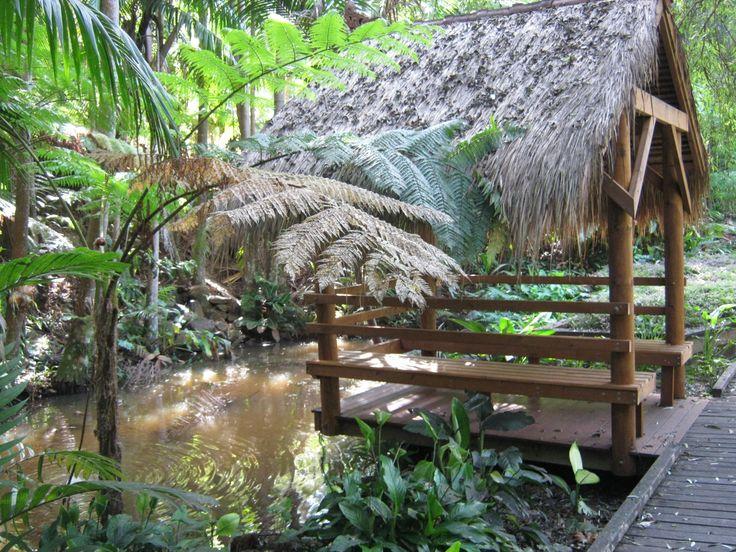 Botanic Gardens,Tamborine Mt