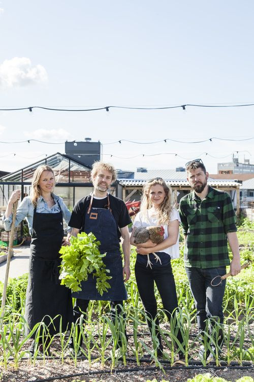 Welcome to Stedsans at ØsterGRO. From left you see the rooftop chefs and founders of Stedsans Mette Helbæk and Flemming Hansen and the rooftop farmers and founders of ØsterGRO Livia Haaland and Kristian Skaarup. Foto af Stine Christiansen / SkovdalNordic