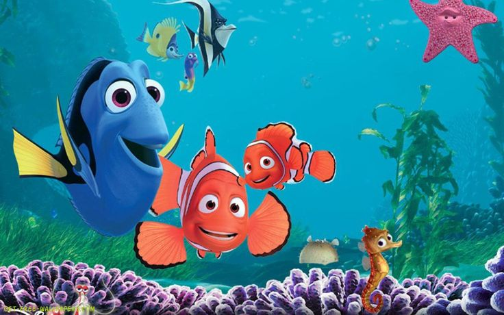 Finding Nemo D Animasi Hd Wallpaper: 25+ Best Ideas About Hd Cool Wallpapers On Pinterest