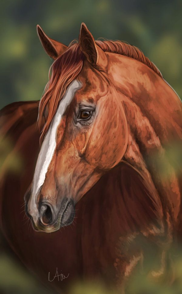 Realistic Horse Painting | www.imgkid.com - The Image Kid ...