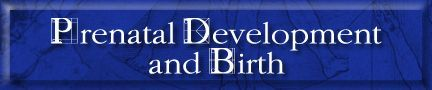 Prenatal Development & Birth