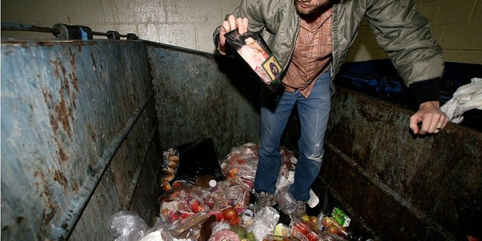 The Top 5 Survival Food Mistakes That Could Force You To Dive Into A Dumpster For Dinner