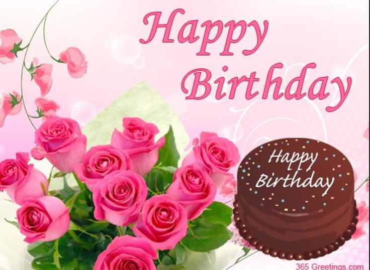 80 best Birthday wishes images – Greetings.com Birthday