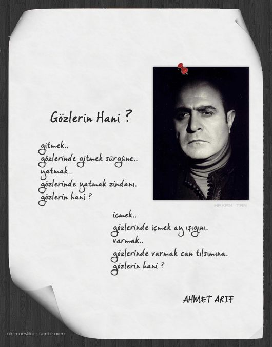 Ahmet Arif
