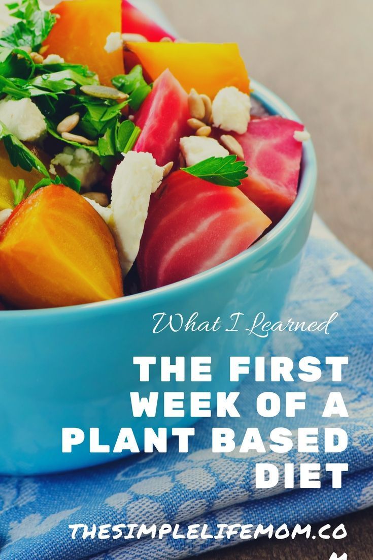 What I've Learned In The First Week Of A Plant Based Diet The first week transitioning to a plant based diet has been hard. I LOVE good food. Comfort food that makes my mouth water by its smell, is my favorite. The thoughts of a tender pot roast, with a homemade thick and savory gravy has been racing through my…Read More→