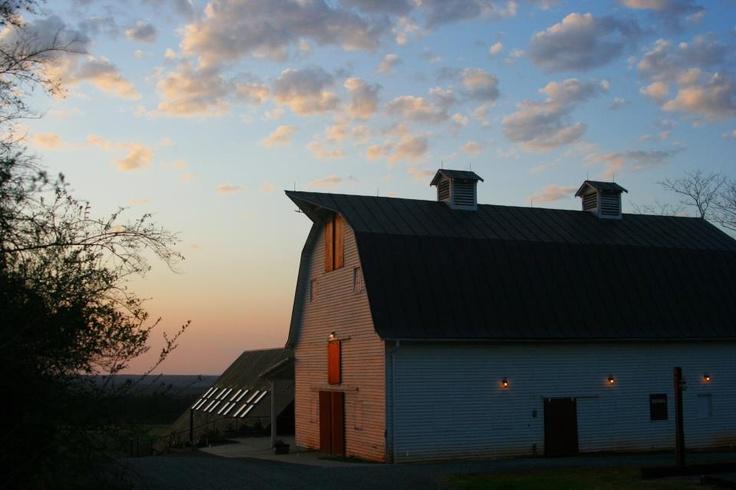 Blenheim Vineyard Barn, Charlottesville, VA