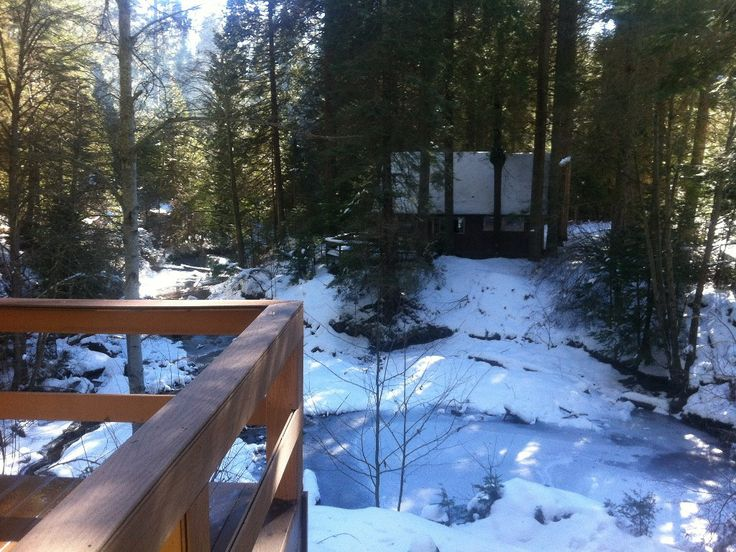 25 best images about cabin rentals on pinterest for Cheap cabin deals in sequoia