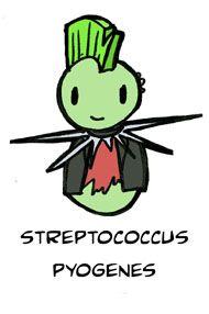 Adopt A Microbe: Streptococcus pyogenes