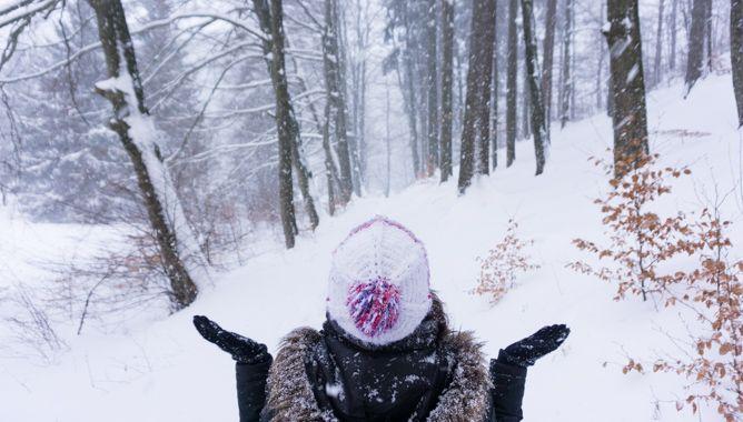 Schneegestöber im Wald bei der Ferienhaus Lichtung Ruhla
