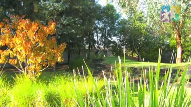 Opportunities for learning in natural spaces EYLF PLP Talking About Practice - Environments for learning- FULL Video. Video by Early Childhood Australia.