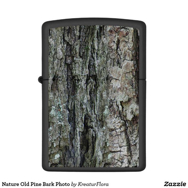 Nature Old Pine Bark Photo