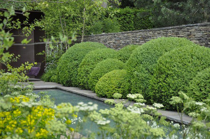 Laurent Perrier Garden. Chelsea Flower Show 2010