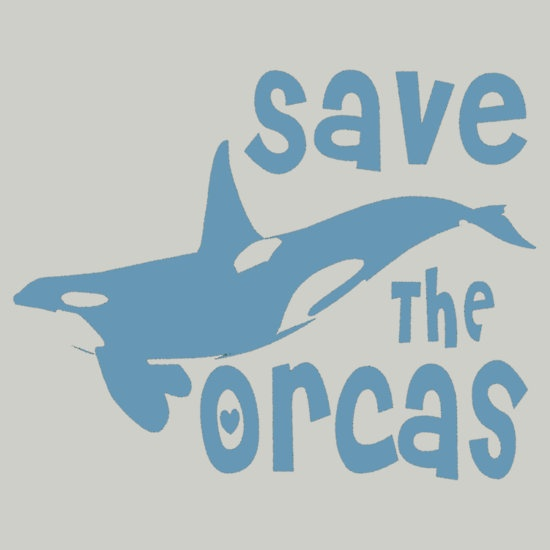 Save The Orcas @ http://www.redbubble.com/people/oiiii/works/8517633-save-the-orcas