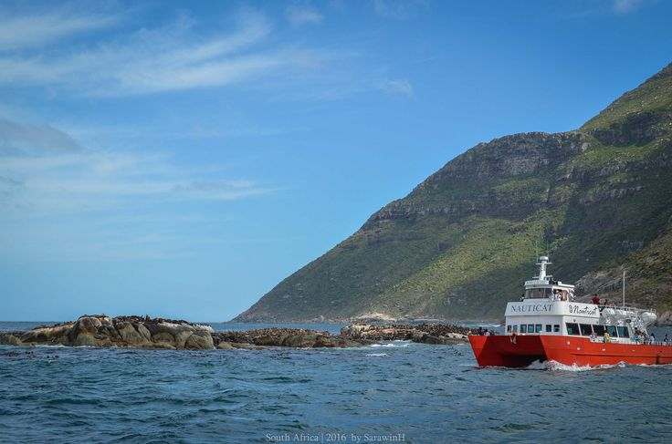Africa's First Time | Vol.1 Cape Town เมืองสวย วีซ่าฟรี ไม่แพง กิจกรรมครบ มาเหอะ! - Pantip