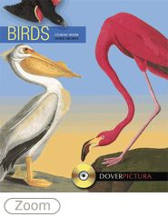 Assembled from sources as diverse as the realistic paintings of John James Audubon and the fanciful creations of Edward Lear, this compilation includes more than 200 images of birds. The paintings, spot motifs, patterns, and other images are reproduced as high-quality, color-profiled JPEG files.