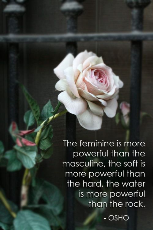 One of the truest things I have ever read. And if you don't believe the feminine is more powerful than you find a real woman and she can bring the strongest man to his knees with a loving touch