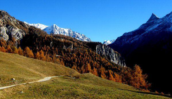 Balade au cœur de l'automne. #bellecote #savoie #notredamedesvernettes #frenchalps