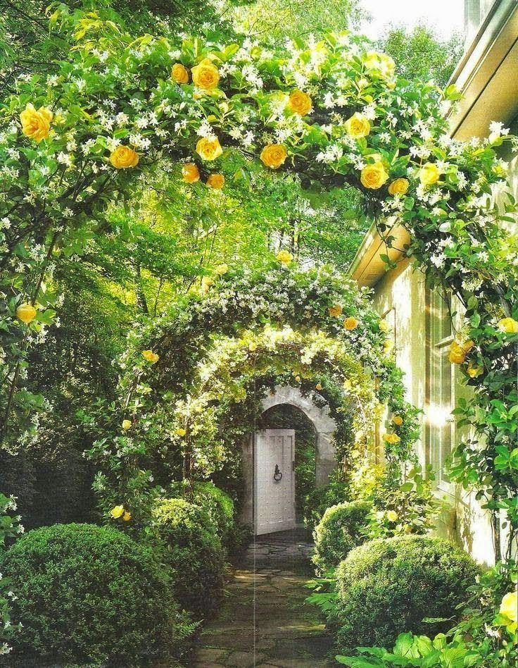 Series Of Beautiful Arbors Gardening Gardenarbor Garten Bepflanzen Garten Geheimer Garten