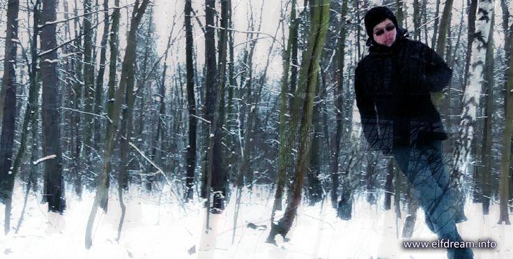 elfdream.info - from the movie - The Last Job - Marc Nadenicek
