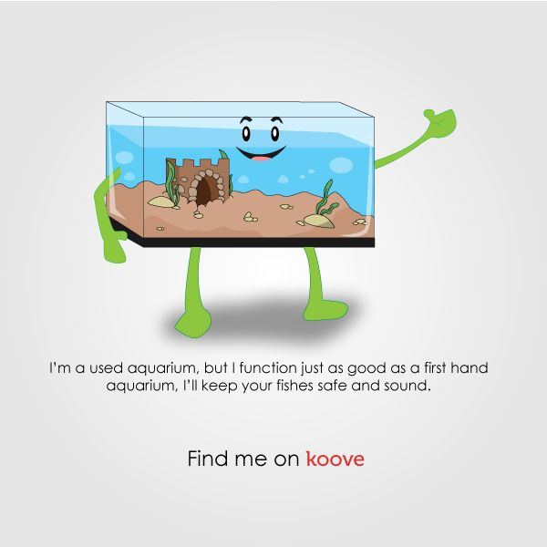 Find him on Koove, give him a new home ! #BuyOnKoove