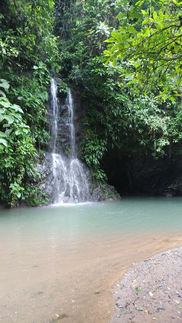 Chagres National Park in Panama- Tour to the Embera Village