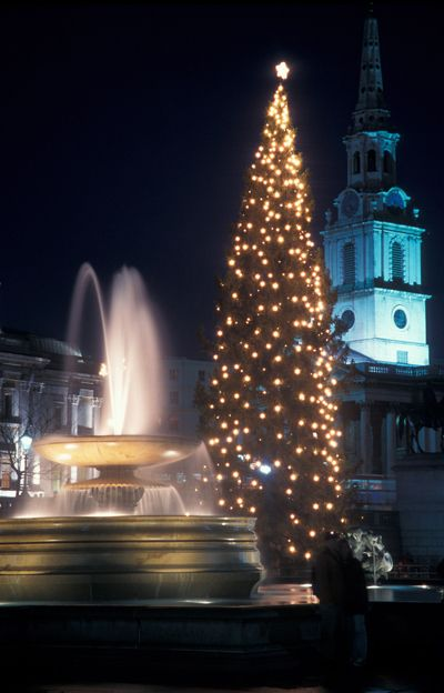 Trafalgar Square at Christmas, the tree is given to the people of the UK from Norway for their support in the 2WW