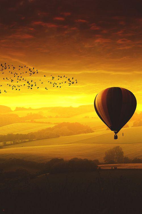 Estudiosos da Saúde informam: Tomar muito Sol - a Vitam. D3, direto na pele, evitando apenas a queimadura; proporciona e devolve a saúde, livrando-se de inúmeras doenças físicas, mentais, emocionais, inclusive as mais graves. Sol - sun - pássaros e balão, muito linda esta imagem. Into the Sunset ~ Hot Air Balloon over German Countryside (Golden sunset, Germany by Marc Goedecke on 500px)